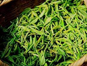 驻马店绿茶